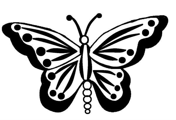 Schmetterling_1.jpg
